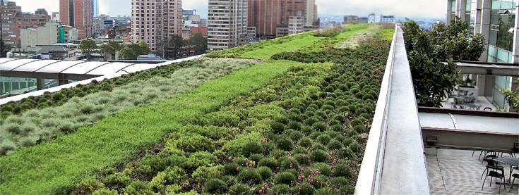 Tecnologia De Telhados Verdes Zinco
