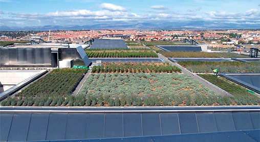 ZinCo Green Roof reference
